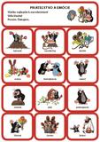 Obrázková ANGLIČTINA S KRTKOM (žltá – kartičky)