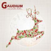 Gaudium - Raz prišlo dieťa CD