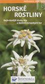 Horské rostliny - nejkrásnejší druhy Alp a dalších evropských hor