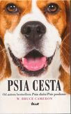 Psia cesta