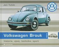 Volkswagen Brouk historie, vývoj, technika, sport