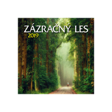 Zázračný les - Nástenný kalendár 2019